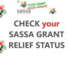 SASSA R350 Grant Application Status For February 2021